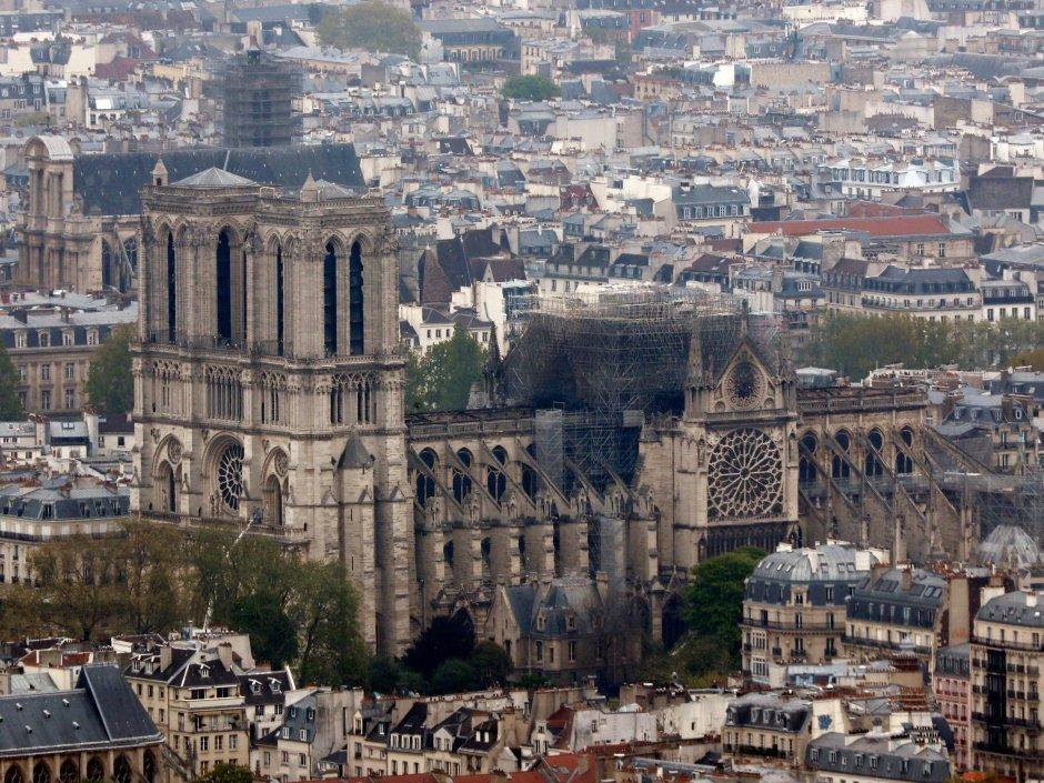 Notre-Dame-morning-after.jpg